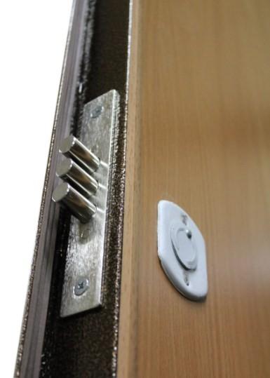 двери порошковые