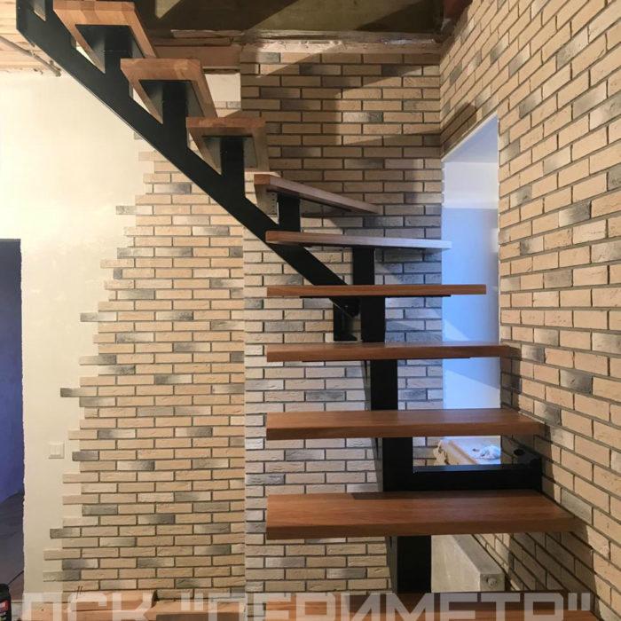 установка лестниц для монокосоура